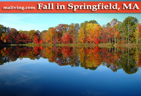 Fall in Springfield, MA - Photo by S. Tidlund