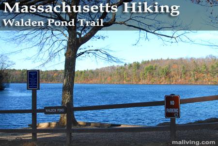 Massachusetts Hiking - Walden Pond Trail