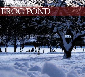 Boston Common Frog Pond