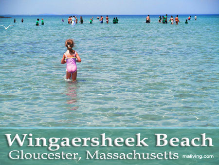 Massachusetts Beaches - Wingaersheek Beach