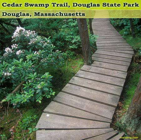 Massachusetts State Parks - Douglas State Park, Cedar Swamp Trail