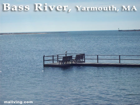 Bass River, Yarmouth, MA - Photo by C. Ladd