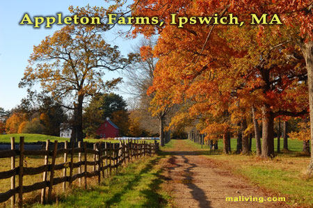Appleton Farms, Ipswich, MA - Photo by Evasik Paulino