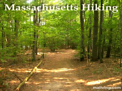 Massachusetts Hikes, Nature Walks and Trails